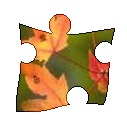 Fall Jigsaw Puzzle